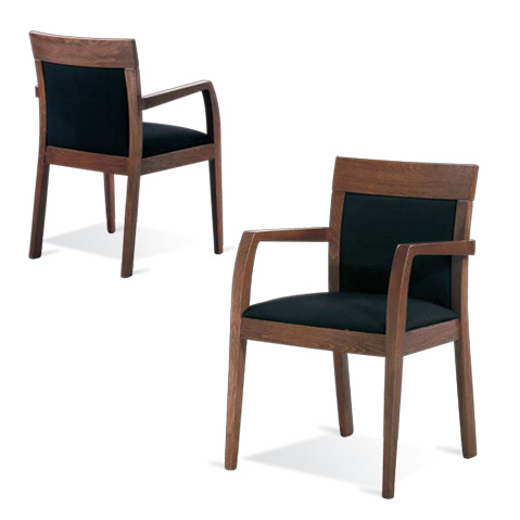 Modern chairs : Fiona Arm
